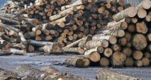 TimberWest forestry operations destabilizing Vancouver Island communities